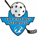 Florbalový klub - FBC Falcons Nepomuk
