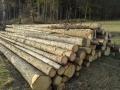 VZ: Prodej dřevní hmoty Nepomuk 07.03.2016