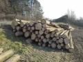 Prodej dřevní hmoty Nepomuk 15.03.2016