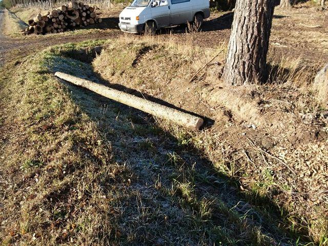 Prodej dřevní hmoty Nepomuk 05.12.2016